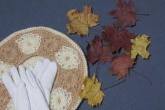 Ropa y accesorios del otoño Boina y guantes hechos punto Asperjado con las hojas de otoño coloridas en un fondo gris Imagen de archivo libre de regalías