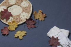 Ropa y accesorios del otoño Boina y guantes hechos punto Asperjado con las hojas de otoño coloridas en un fondo gris Fotos de archivo libres de regalías