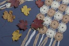 Ropa y accesorios del otoño Bufanda hecha punto Asperjado con las hojas de otoño coloridas en un fondo gris Imagen de archivo