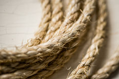 Rope. Still Life of Coiled Rope, Lasso, Twine Royalty Free Stock Photography
