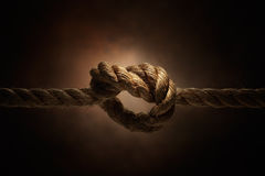 Rope. Tie into a knot, studio shot Stock Image
