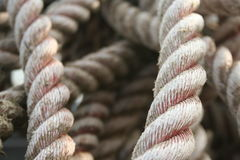Rope. Used for fishing Stock Photography