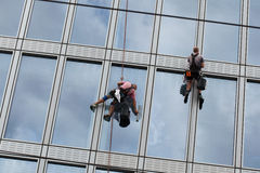 Rope access workers clean windows in office building stock photography