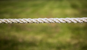 Rope against green Royalty Free Stock Photo