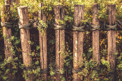 Rope around wooden fence Stock Photo