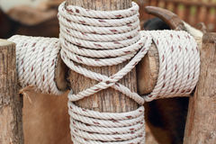 Rope Background with old wood Stock Photo