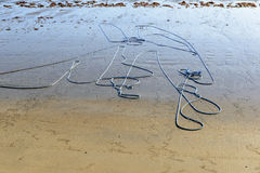 Rope on the beach, Pititinga (Brazil) Royalty Free Stock Photos