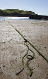 Rope on a beach with sea and hills in the background. Royalty Free Stock Photo