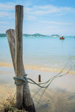 A rope of a boat is tie up with wooden stake