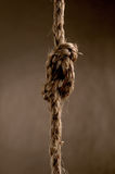 Rope in a bow knot Stock Photo