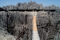 Rope bridge. In the Tsingy Royalty Free Stock Photo