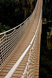 Rope bridge Stock Image