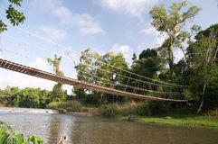 Rope bridge. Across the canal at  Khao yai National park Thailand Royalty Free Stock Images