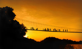 Rope bridge across a river Stock Image
