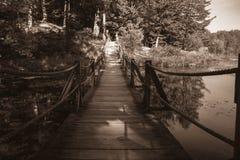 Rope Bridge. Royalty Free Stock Photo