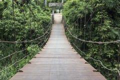 Rope bridge. Close up rope bridge , rope bridge background Royalty Free Stock Image