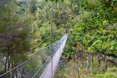 Rope bridge in the jungle of Abel Tasman National Park in New Ze Royalty Free Stock Photography