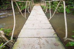 Rope bridge over the river in forest Royalty Free Stock Image