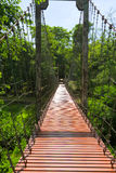 Rope bridge or suspension bridge in forest at Khao Kradong Fores Royalty Free Stock Images