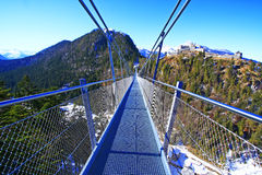 Rope bridge tyrol Royalty Free Stock Photos