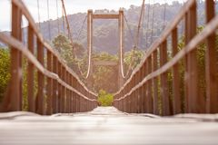 Rope bridge for walk through mangrove forest. Selective focus royalty free stock image