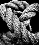 Rope Stock Image