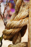 Rope in closeup Royalty Free Stock Photo