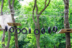 Rope den svängande bron för träningsläger i skogen Arkivbilder