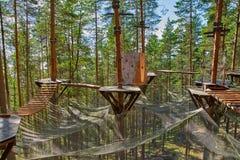 Rope el parque en un día de verano en bosque del pino Imagen de archivo libre de regalías