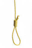 Rope with gallows knot royalty free stock image