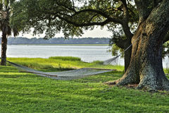 Rope hammock on the water under tree Stock Photo
