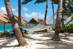 Rope hammocks suspended on tropical island awaiting traveler to relax in. This hammock invites relaxation and some leisure time in some wonderful, tropical Stock Images