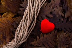 Rope and a heart shaped icon on dry leaves of autumn background Stock Images