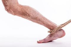 Rope holding human leg ailing varicose veins of the lower extrem Stock Image