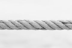 Rope isolate Stock Image
