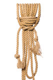 The rope isolated on the white background Royalty Free Stock Photos