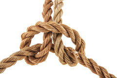 Rope. Isolated on white background Royalty Free Stock Images