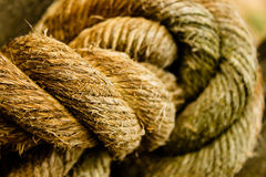 Rope Knot. Large rope tied in a knot royalty free stock images