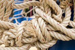 Rope And Knot On Background. Outdoor view. Selective focus and Close up detail image Stock Images