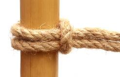 Rope knot on a bamboo Stock Photo