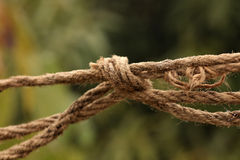 Rope knot Royalty Free Stock Photos