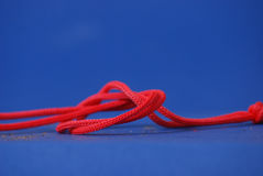 Rope knot on blue Stock Photography
