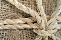 Rope knot. Stock Photography