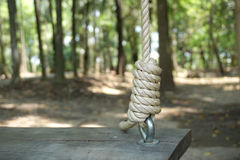 Rope knot holding the timber swing Stock Photo