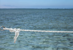 Rope with knot over sea Stock Photography