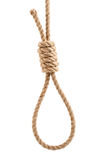 Rope with knot for suicide. Isolated on white background Royalty Free Stock Photo