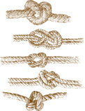 Rope knots. Vector drawing of a different rope knots Stock Photo