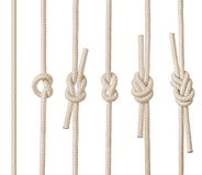 Rope Knots. An illustrated set of various rope knots, isolated on white background Stock Photos