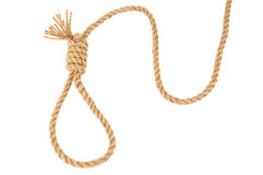 Rope knotted on noose Stock Photos