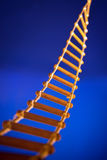 Rope ladder for climbing to top Royalty Free Stock Photo
